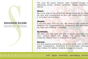 Sharon Klein Web